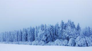 50オヤジが「粉雪」を歌うので、研究してみた